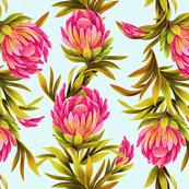 Protea Bloom Floral
