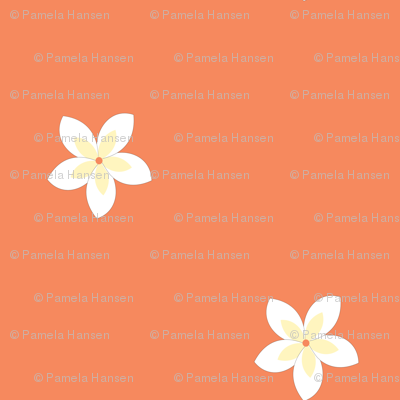 flowers on tangerine
