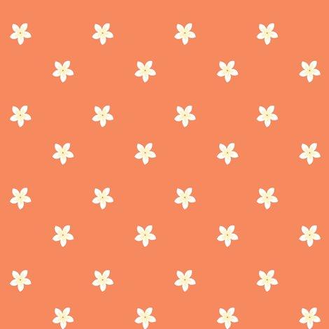 Rrflowers-on-tangerine_shop_preview
