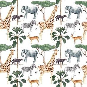 Let's go on a safari