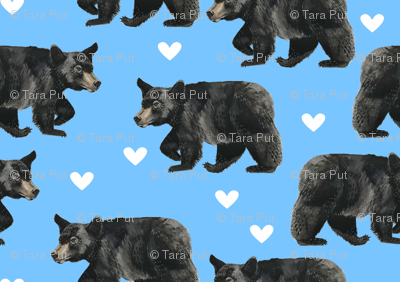 Black Bears with Hearts on Blue