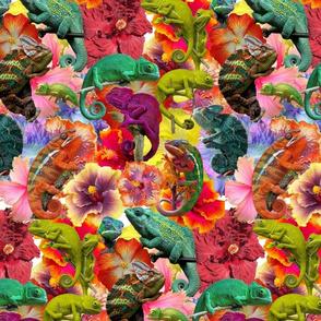 Reptil and hibiscus