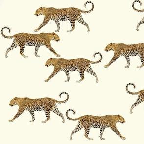 Leopards in cream