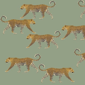 Leopards in sage green
