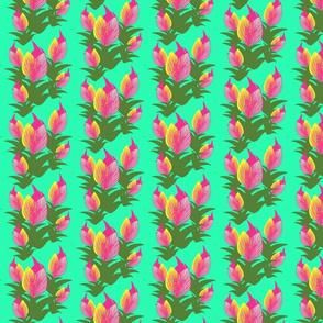 paradisetulips