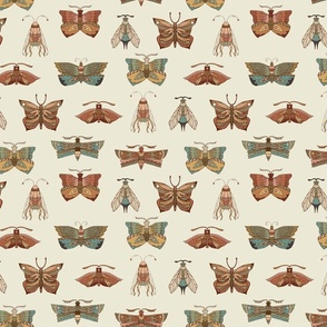 Moth and Butterfly Wing Print