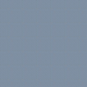 Checkerboard Small Navy Blue And White