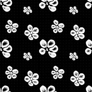 Soft Frangipani Lace on Black