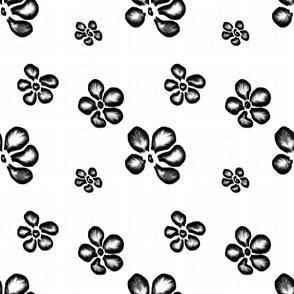 Black Frangipani Lace   Black + White