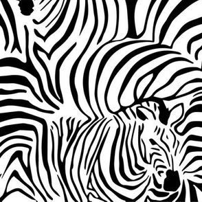 Zebra's Breach