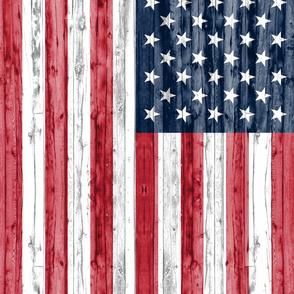 American Flag - 2 yard Minky