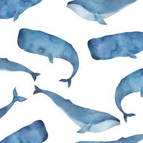Blue Whales on White Background Boys Underwater Theme
