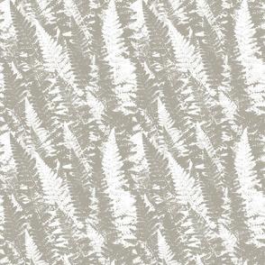 Rrrrrrrrrrrrgray-ferns-pattern_shop_thumb