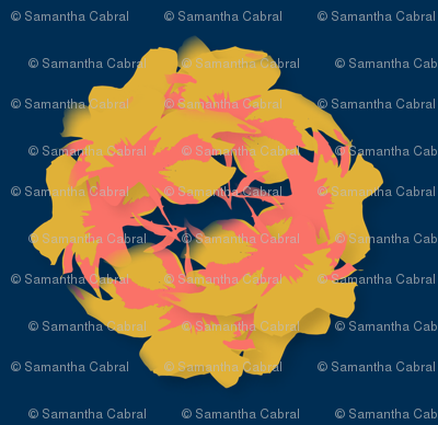 Cluster of coral in navy background