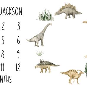 Dinosaur Days Baby Milestone Blanket