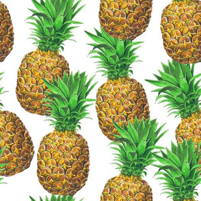 Sunny pineapples (white background version)