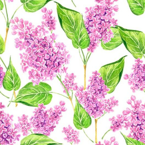 Pink watercolor lilac flowers