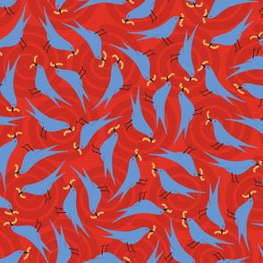 Earlybirds-reds