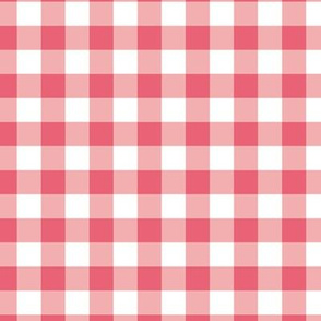 Coral Pink Gingham Squares Plaid