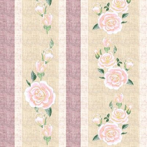 Old Fashioned Coral Pink roses on Pink and Cream Stripe