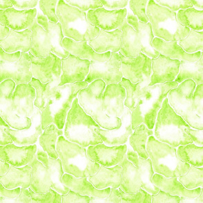 19-1AD Lime Green Kiwi Cloud Watercolor _ Miss Chiff Designs