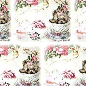 Yorkie Teacup