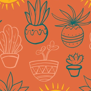 Southwestern Potted Plants
