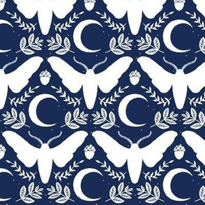 small moth and moon-navy