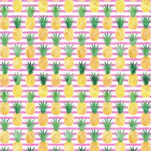 (small scale) pineapples - watercolor on pink stripes C19BS