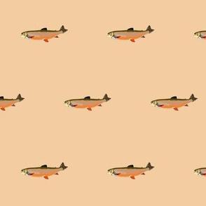 fish b7