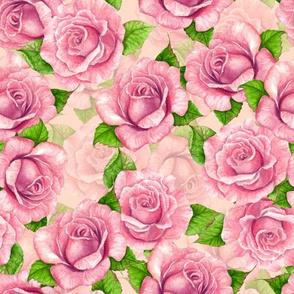 Pink watercolor roses pattern