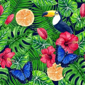 Toucan and tropical garden watercolor