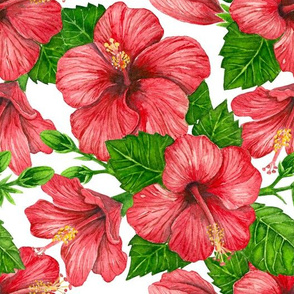 Red hibiscus watercolor pattern