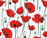 Poppy-field-blooming_thumb