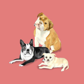 Custom Bulldog Boston Terrier and Chihuhua on Dark Pink