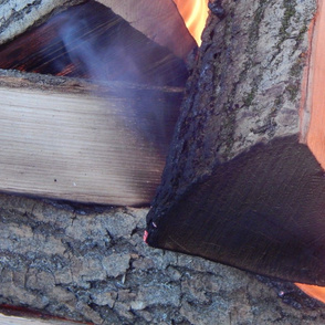 Fire burns in the woods on wood
