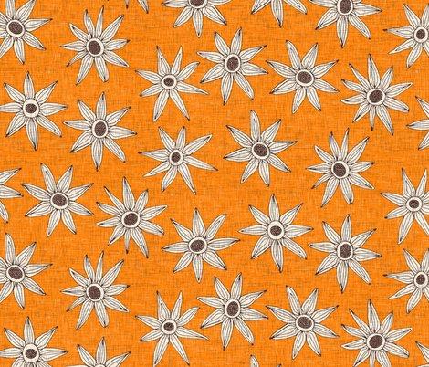 Rsema-turmeric-brown-st-sf-hd-12012019_shop_preview