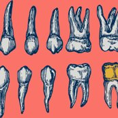 Rrrrteethpatternoncoralcontest_shop_thumb