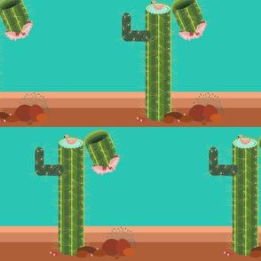 poolside saguaro