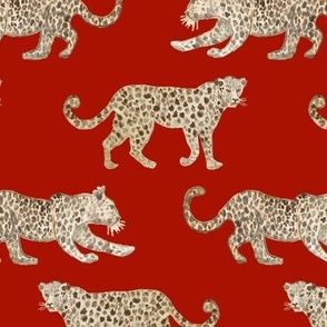 Leopard Parade red