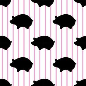 Black Pig & Pink & White Pin Stripes