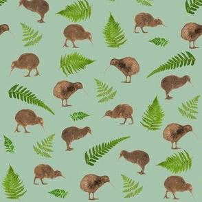 kiwis and ferns