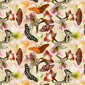 Custom Amaryllis and Butterflies