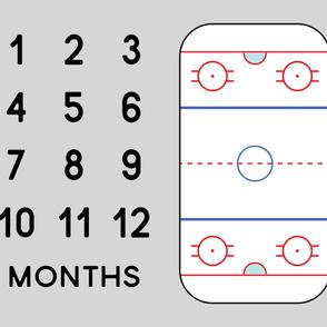 "(42"" width) Ice Hockey Rink - Baby Watch Me Grow Panel -  grey LAD19"