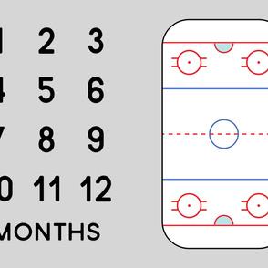 "(minky 54"") Ice Hockey Rink - Baby Watch Me Grow Panel - grey LAD19"