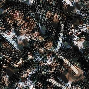 Snake, snake skin