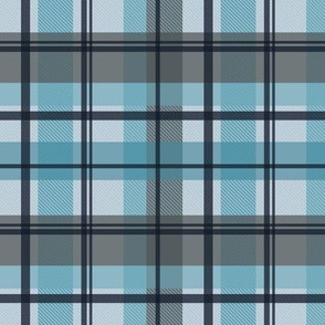 winter plaid - icy gingham