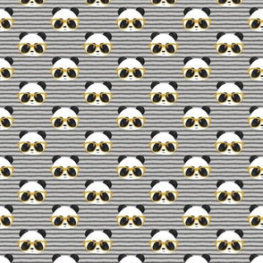 (small scale) pandas with glasses - grey stripes gold C19BS