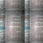 Mark 3:23-29
