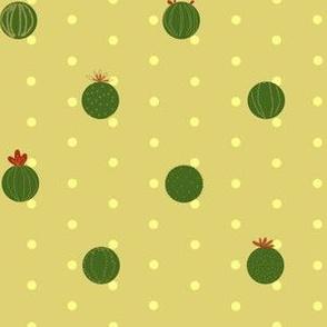 Cactus Polka Dot | Stock Pot